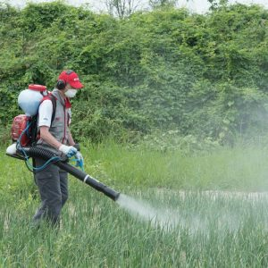 Cifarelli M1200 Backpack Sprayer