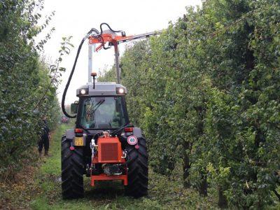 Rinieri ORP Orchard Pruner 1
