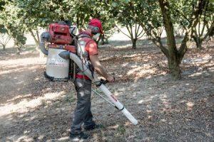 Cifarelli V1200E Harvesting Vacuum