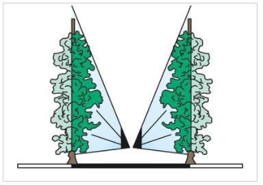 2 Fishtails at 3 Sectors (T.2V3.T) 4