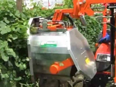 Rinieri DRF Leaf Remover 2