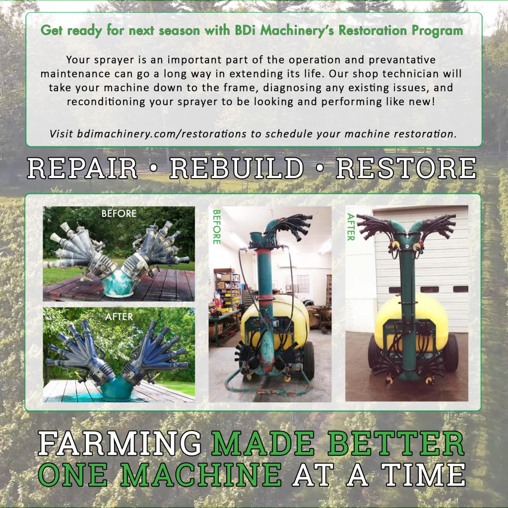 Restorations 1